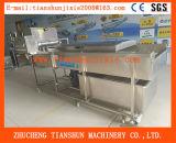 Plantaardig Fruit en Plantaardige Wasmachine ts-4500 van de Meloen van de Mango van de Wasmachine van het Fruit Oranje