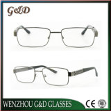 Optische Frame van uitstekende kwaliteit Tb3879 van het Oogglas van Eyewear van het Metaal van de Manier het Populaire