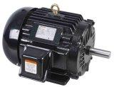 NEMA-erstklassige Leistungsfähigkeit WS-elektrischer Motor