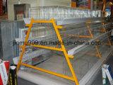 Cage de matériel de volaille d'oiseaux de poulet sur la vente