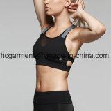 Sports Clothhing pour la femme, usure de sports, soutien-gorge de femmes, training