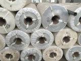 고품질 PVC 컨베이어 벨트 PU 컨베이어 벨트 Cmax-Sel
