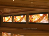 P2 P3 P4 P5 P6 P8 P10 im Freienmiete LED-Bildschirmanzeige