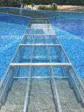 4FT x 4FT Aluminium-Rahmen-Acrylglas T-Form Stadium für Brücke