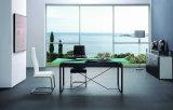 セットされる安い現代ガラス食堂の家具(CT-64B CY-92)
