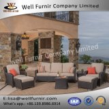 Disposizione dei posti a sedere profonda buona del vimine 7PC di Furnir Wf-17081