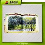 Shengyuan 환경 친절한 브로셔 인쇄