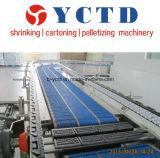 Cinta transportadora industrial de la placa (YCTD)