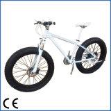 الصين [هيغقوليتي] حاكّة عمليّة بيع [أم] سمين إطار العجلة درّاجة درّاجة سمين ([أكم-543])