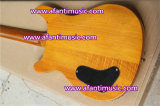 Prs вводят электрическую гитару в моду (Afanti APR-925)
