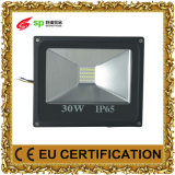 Energy Saving 30W Projecteur LED pour Light Outdoor Ce (IP65)