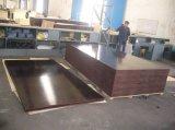 Qualitäts-Film gegenübergestelltes Furnierholz des Grad-E1 für Aufbau und Schrank