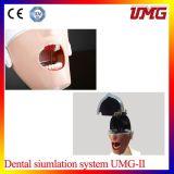 Unidades dentales de simulación de la simulación oral dental del sistema