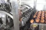 Oeuf liquide lavant séchant la rupture séparant l'installation de fabrication