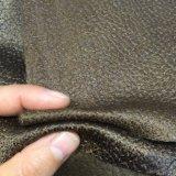 Unità di elaborazione che osserva il tessuto del sofà fatto da velluto (621CB)