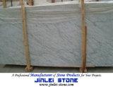 Pietra di marmo di Bianco Carrara per il comitato di parete