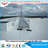 Tpo wasserdichte Membrane für flaches Dach mit ausgezeichneter Wetterbeständigkeit