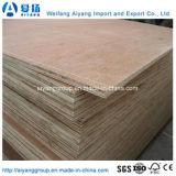 Alles Größen-Pappel-Kern-Handelsfurnierholz für Tür-Haut
