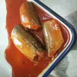 Законсервированная скумбрия в томатном соусе