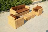 Мебель софы ротанга/софа ротанга напольная (SC-B9508-H)