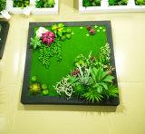 Piante e fiori artificiali della pianta succulente Gu-Jy823213726