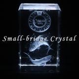El laser del cristal 3D grabó al agua fuerte a Piscis