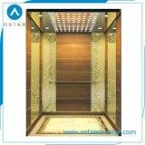 AC380V Vvvf 상승 문 시스템을%s 가진 소형 별장 엘리베이터 비용