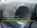 Le barre d'acciaio deformi laminate a caldo per costruzione/struttura/rinforzano/calcestruzzo