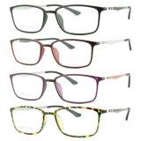 Het recentste Nieuwe Optische Frame van het Oogglas Eyewear van Ultem van het Ontwerp Plastic met Tempel 8007 van de Vezel van de Koolstof