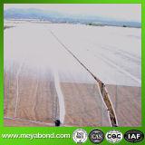 Rete agricola trasparente dell'insetto dell'HDPE anti/possedere la rete dell'insetto per agricoltura