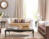 Sofá elegante branco da tela de Loveseat