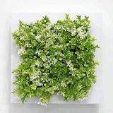 Plantes et fleurs artificielles de la centrale succulente Gu-SD-15119
