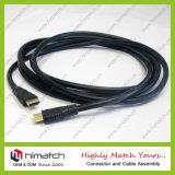 un type au câble du C HDMI