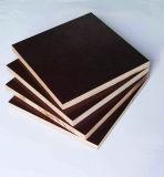 El uso de la construcción película de 18 milímetros hizo frente a la madera contrachapada
