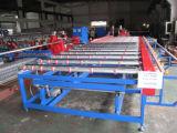 製造業者の供給のガラス二重エッジング機械機械