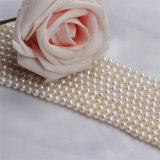 diseños baratos de la cadena de la perla natural del precio de 5m m AA Wholsesale