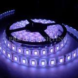 Un nastro flessibile di 5050 SMD RGB LED