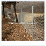 動物の金網の塀、ヒンジ接合箇所フィールド塀、牛Fance