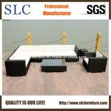 Конструкция софы напольной мебели софы мебели роскошная (SC-B6017)