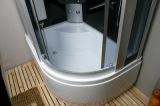 Cerco luxuoso do chuveiro do encaixe do quarto de chuveiro (LTS-9912L/R)