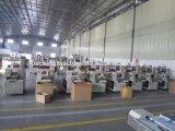 Машина Ald-450W полноавтоматических замороженных продуктов горизонтальная упаковывая