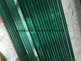 De groene Aangemaakte Rib van het Glas