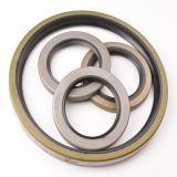 Rahmenta-/tb Oil Seal mit Steel Frame