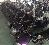 Vespa eléctrica de Harley Citycoco 1000W con la batería de litio de alta velocidad de gran alcance