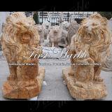 Statua dorata del leone del travertino per la decorazione domestica Ma-565