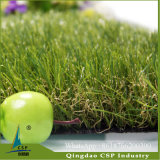 Landscaping лужайка травы безводная