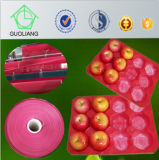 Fruit를 위한 SGS/China/PP Tray Liners