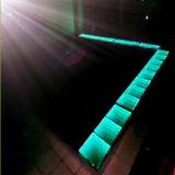 De gevoelige LEIDENE Verlichting Dance Floor van het Stadium