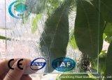 Duidelijk Rococo's Gevormd Glas met Ce, ISO (38mm)