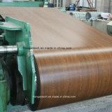 A bobina a mais nova PPGL da chapa de aço da cor da impressão